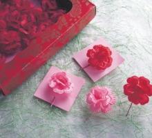 玫瑰大春花-紅/粉