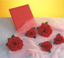 布絨花-大B紅