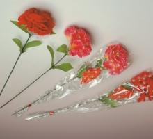 康乃馨大枝花