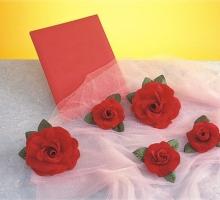 布絨花-中紅