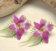 單朵石斛蘭