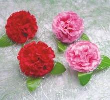 康乃馨小朵蕾絲