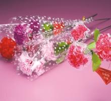 3朵康乃馨蕾絲 套袋