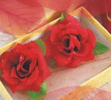 玫瑰花-中A