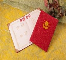 金蒼(紅)大凸証書